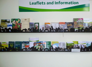 Eco Centre Leaflets enhance,JPG