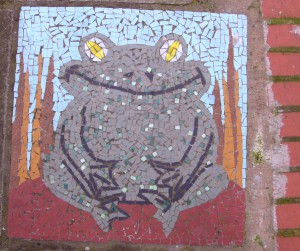 GPk Mosaic, Frog