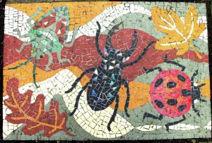 Mosaic Ladybird Shieldbug Beetle Oakleaf
