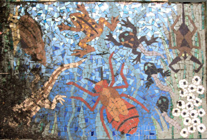 Mosaic Spider and Frog