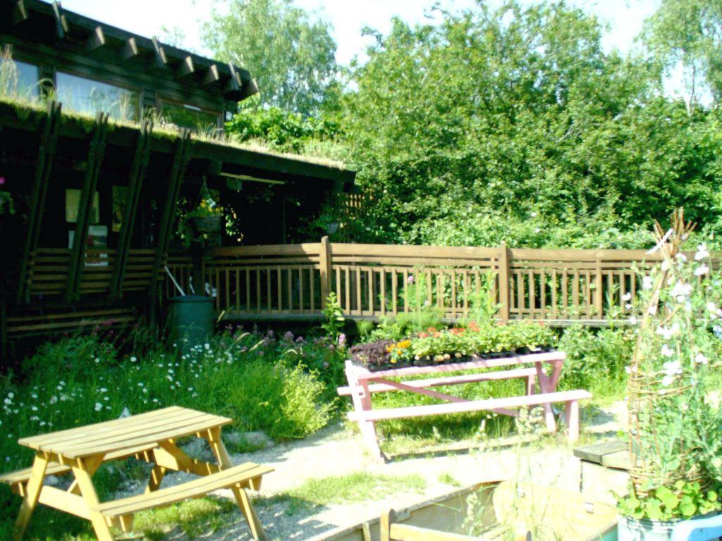 Peckham - The Centre, benches, mini-meadow