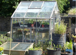 Row 1 No 3 Small Glasshouse, cold frame