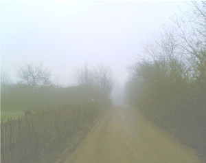 Row 2 No 2 - Fog in winter, view up drive, Gillespie Park
