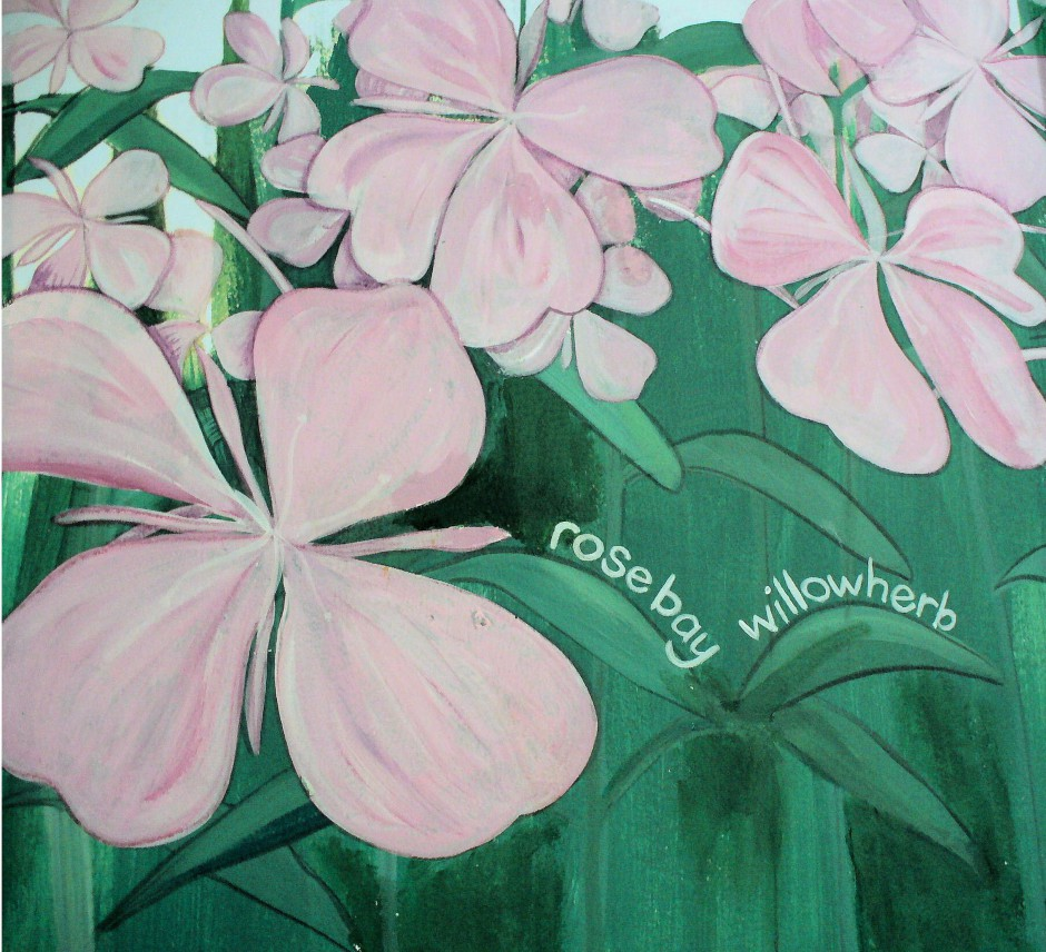 Row 4 No 3 - Wildflower mural - Rosebay Willowherb