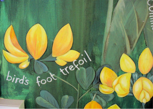 Row 5 No 2 - Wildflower mural - Bird's FootTrefoil