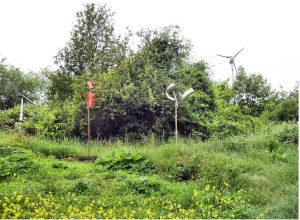 Row 6 No 3 Metal Sculptures and Wind Turbine