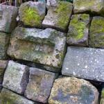 vic brick fern bed wall