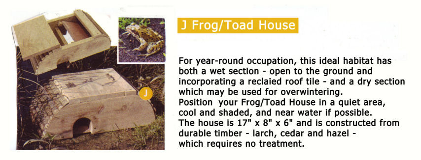 how to catch a toad in the house