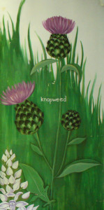 Knapweed on wildflower mural, Ecology Centre, Gillespie Park