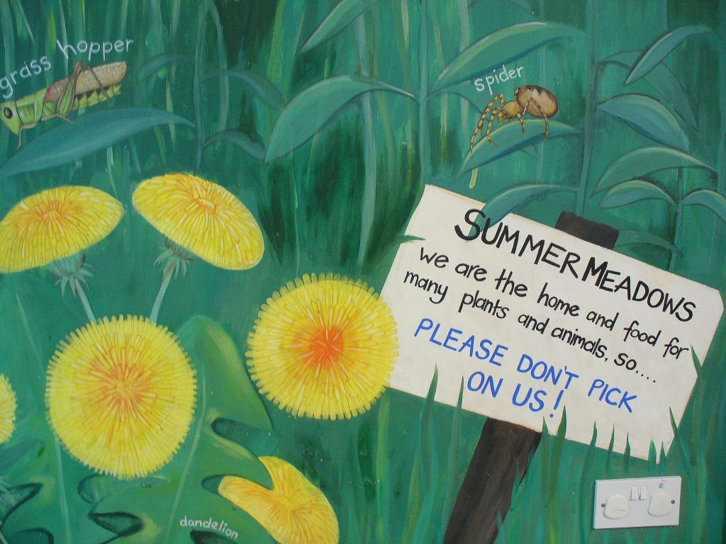MURAL web - tidied up interior mural - dandelion, closeup of summer meadows sign