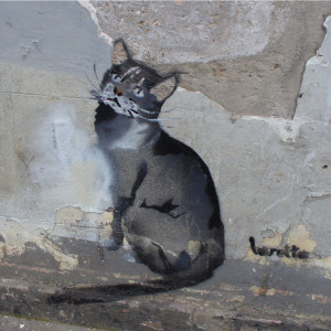 Row 2 No 2 Banksy cat on wall of Highbury shop