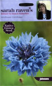 Sarah Raven's seeds cornflower crop
