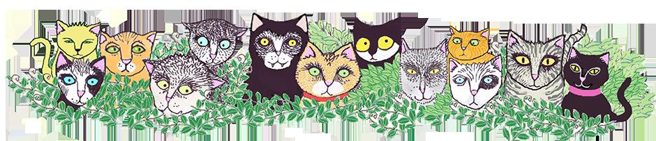 cats-cats-cats-top