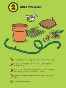 Bee nesting 2