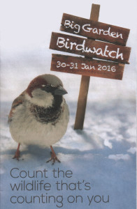 Big Garden Birdwatch 2016