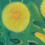 Dandelion from Ecology Centre mural