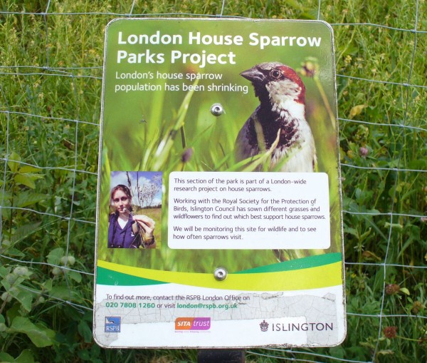 London House Sparrow Parks Project, Islington planting and sign 999