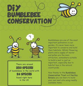 Part of Bumblebee Conservation Trust's do it yourself Homes for Bumblebees campaign